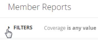 Member Reports_Filters